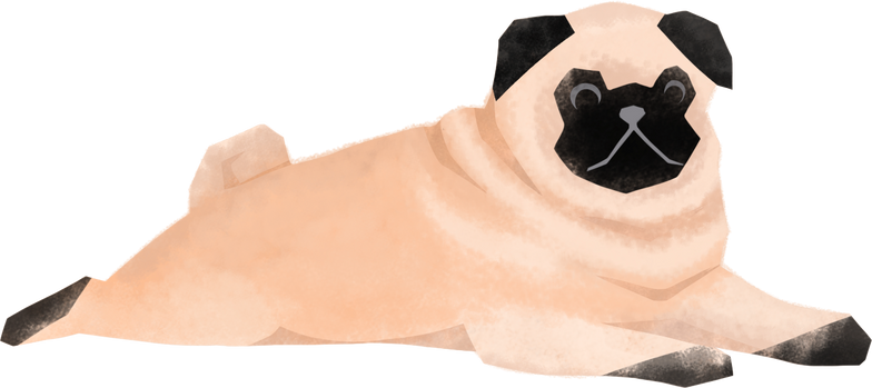 style pug Vector images in PNG and SVG   Icons8 Illustrations