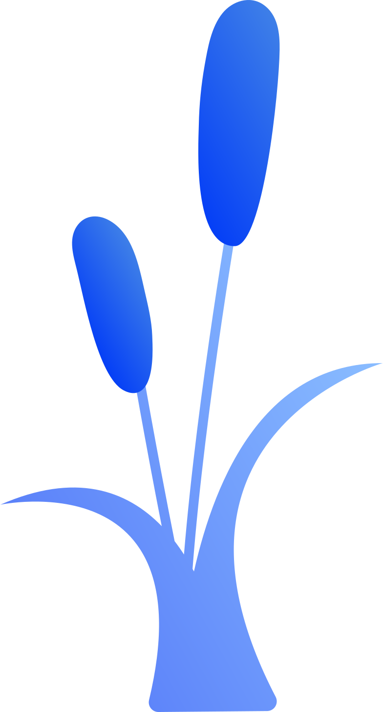 reeds Clipart illustration in PNG, SVG