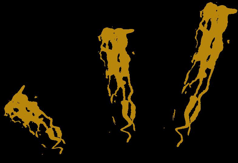 tk gold splash Clipart illustration in PNG, SVG