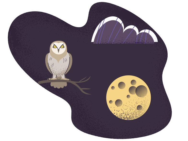 style Wild life at night Vector images in PNG and SVG | Icons8 Illustrations
