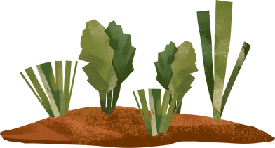 style garden bed images in PNG and SVG | Icons8 Illustrations