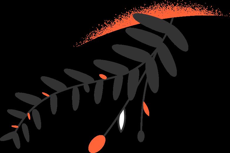 success success  plants Clipart illustration in PNG, SVG
