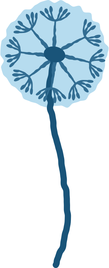 style dandelion Vector images in PNG and SVG | Icons8 Illustrations