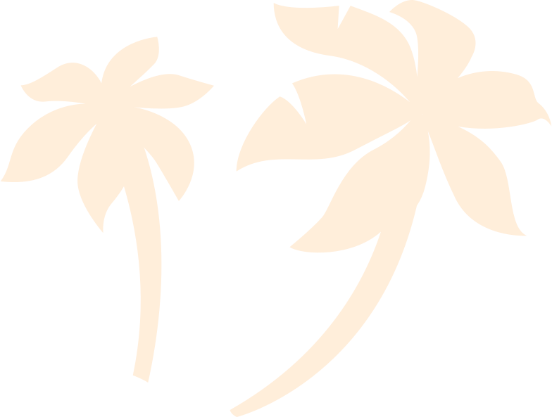 background palm Clipart illustration in PNG, SVG