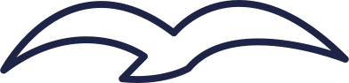 style seagull 2 line images in PNG and SVG | Icons8 Illustrations