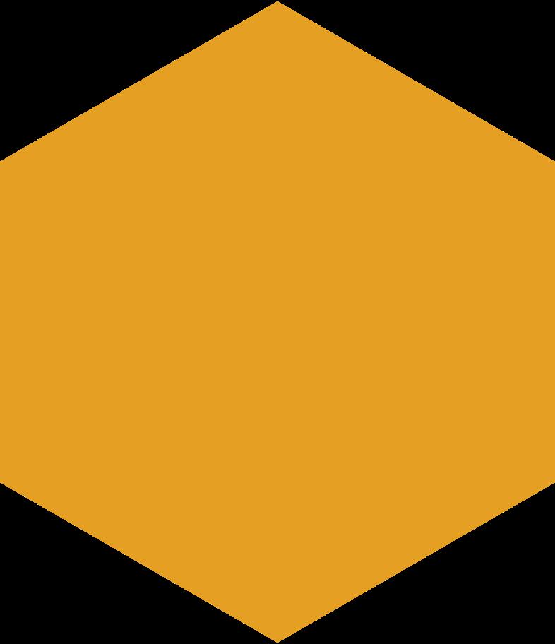 hexagon orange Clipart illustration in PNG, SVG