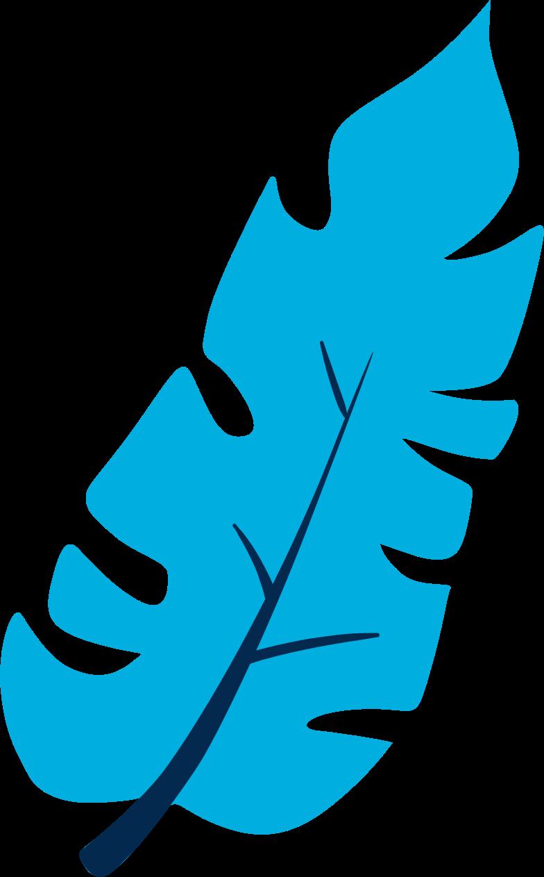 tropical leaf Clipart illustration in PNG, SVG