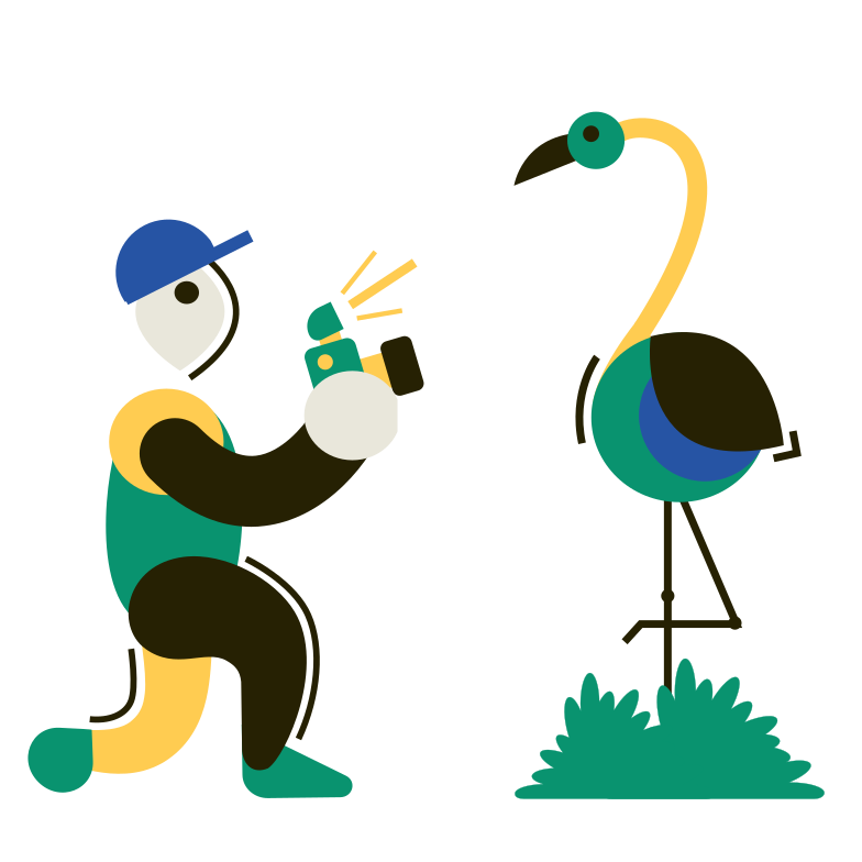 style Wildlife Photographer Vector images in PNG and SVG | Icons8 Illustrations