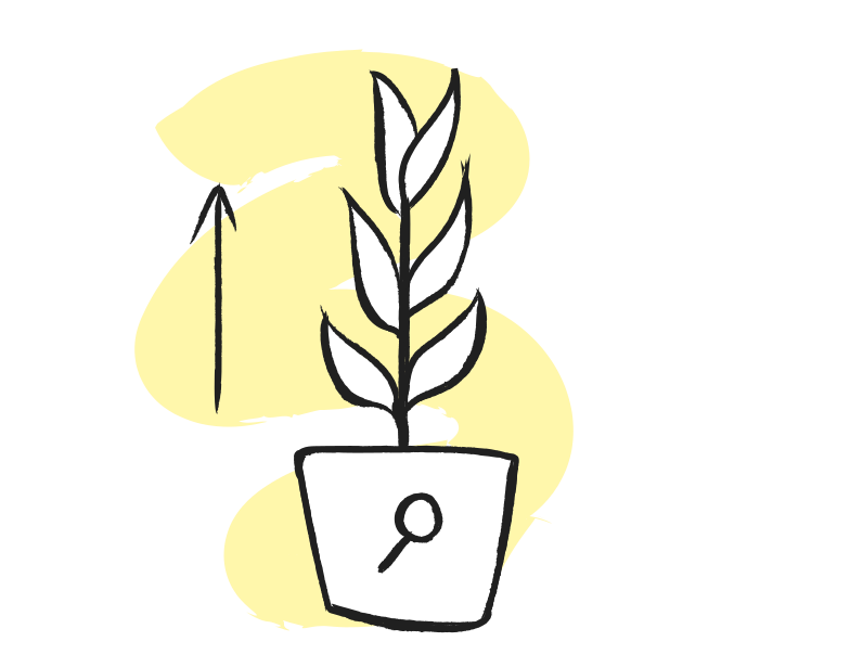 Seo growth Clipart illustration in PNG, SVG