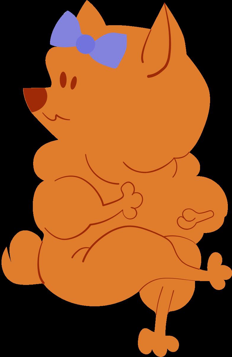 brown pomeranian dog Clipart illustration in PNG, SVG