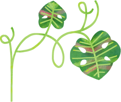 style plants images in PNG and SVG | Icons8 Illustrations