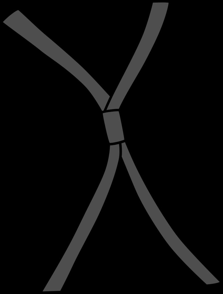 suitcase straps Clipart illustration in PNG, SVG