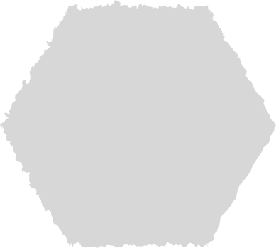 style hexagon grey images in PNG and SVG | Icons8 Illustrations