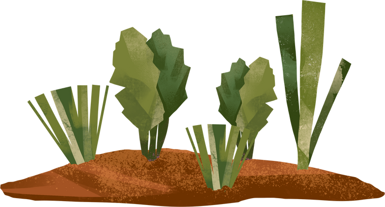 style garden bed Vector images in PNG and SVG | Icons8 Illustrations