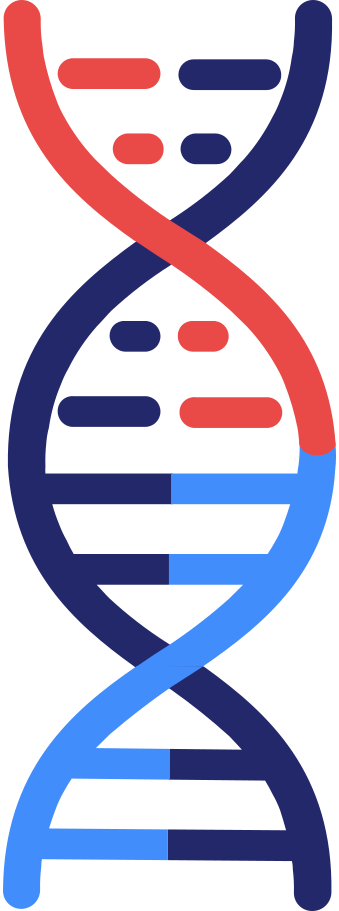 style dna images in PNG and SVG   Icons8 Illustrations