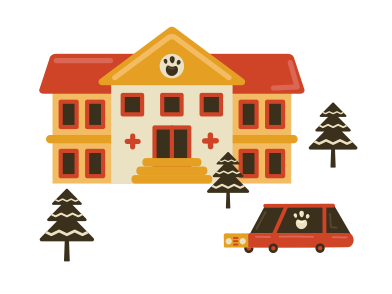 style Veterinary clinic images in PNG and SVG | Icons8 Illustrations