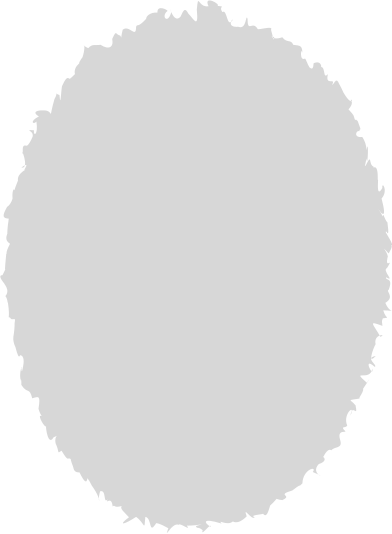 style ellipse grey images in PNG and SVG | Icons8 Illustrations