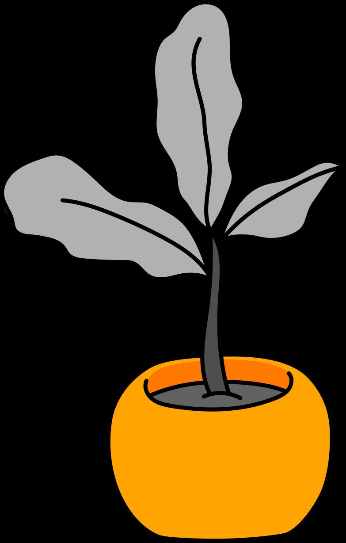 flower in a pot Clipart illustration in PNG, SVG