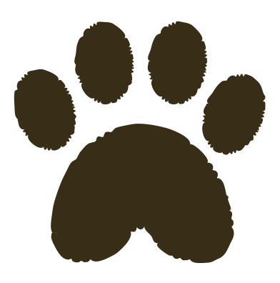 style paw print images in PNG and SVG | Icons8 Illustrations