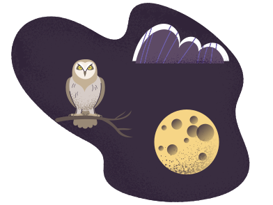 style Wild life at night images in PNG and SVG | Icons8 Illustrations
