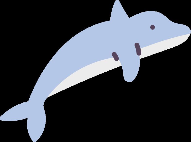 dolphin のPNG、SVGクリップアートイラスト