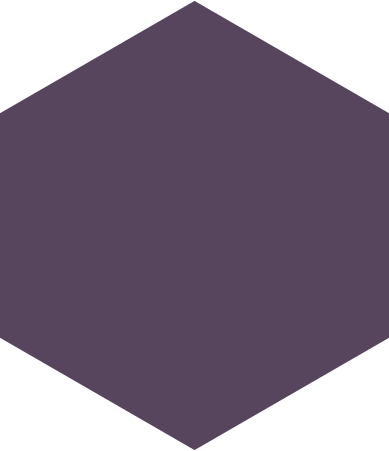 style hexagon purple images in PNG and SVG   Icons8 Illustrations