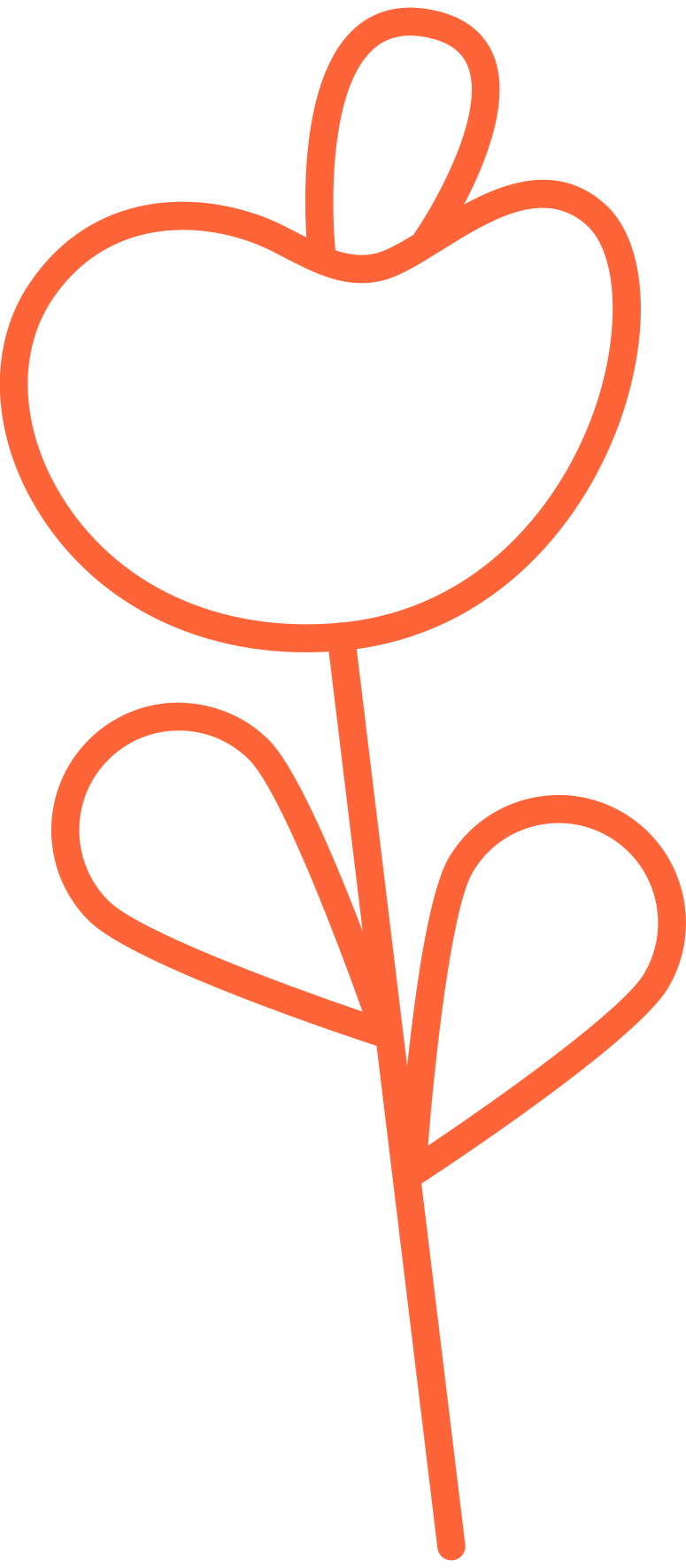 delivery 2  flower Clipart illustration in PNG, SVG