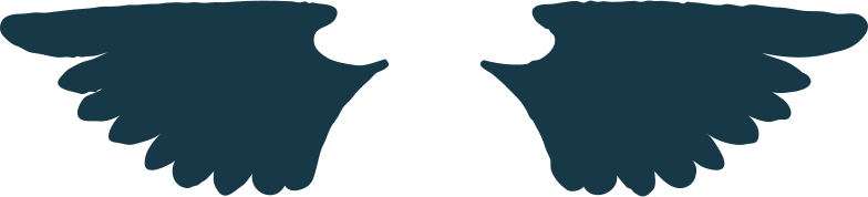 翼 のPNG、SVGクリップアートイラスト
