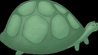 Schildkröte Clipart-Grafiken & Bilder als PNG und SVG