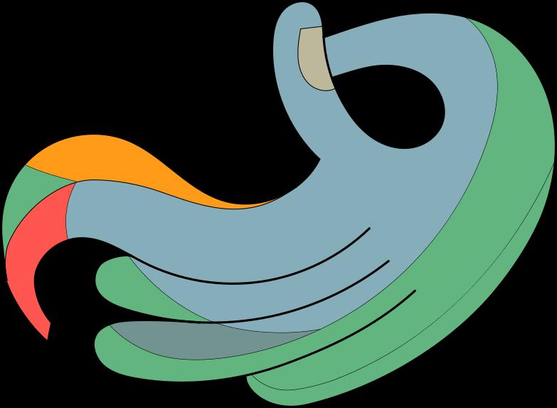 arm Clipart illustration in PNG, SVG
