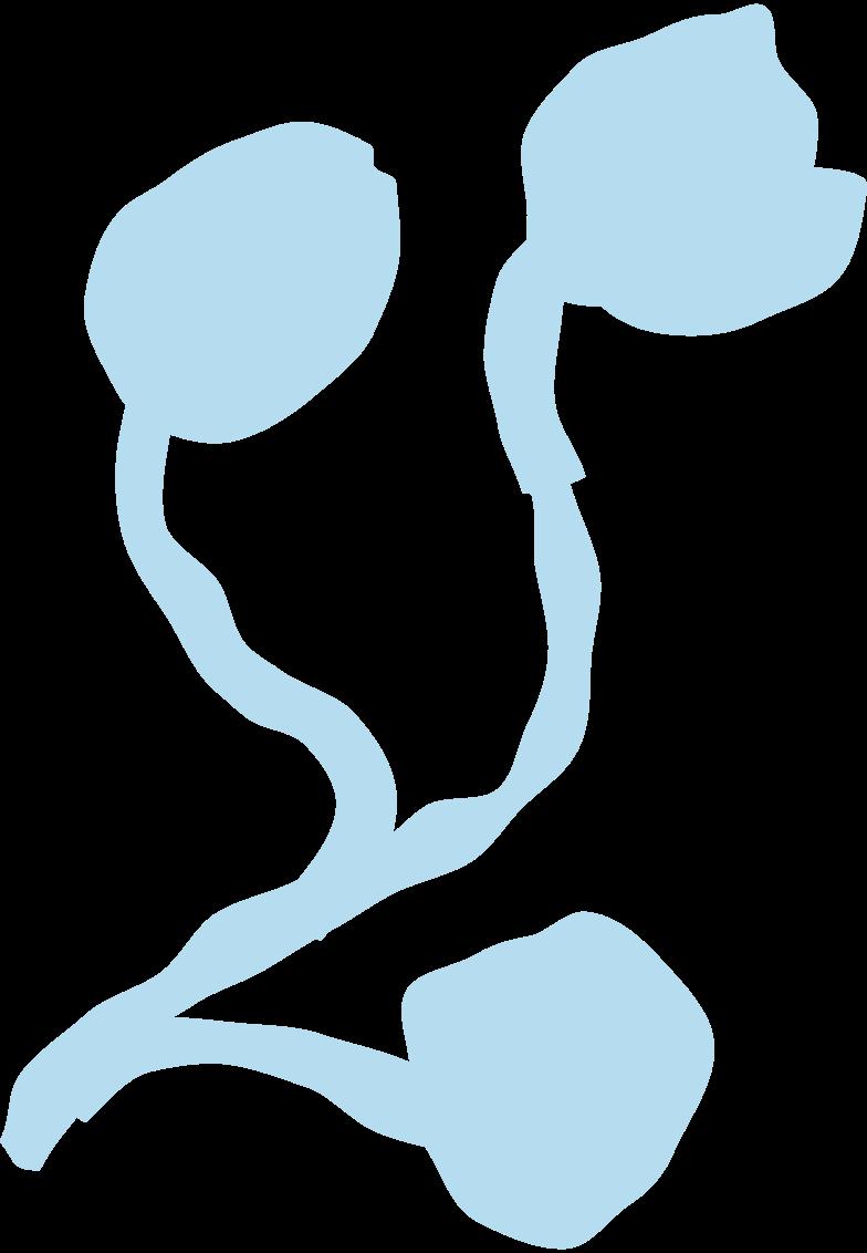 spring flowers Clipart illustration in PNG, SVG