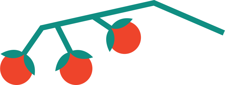 cherry tomatoes Clipart illustration in PNG, SVG