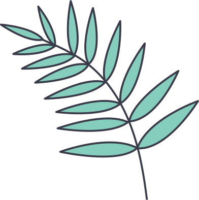 style tropical leaf images in PNG and SVG   Icons8 Illustrations