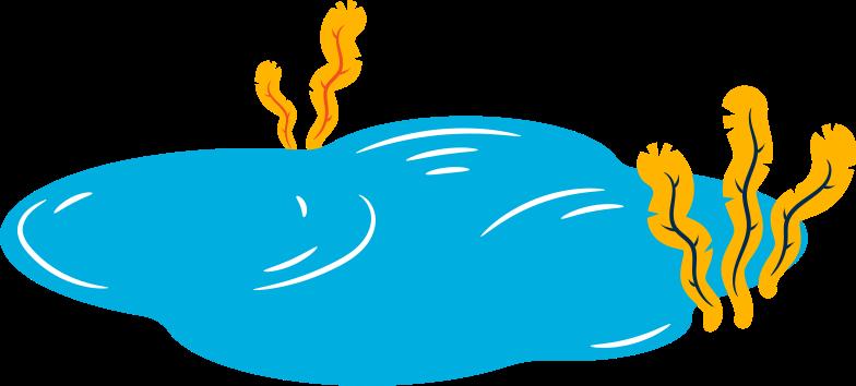pond Clipart illustration in PNG, SVG