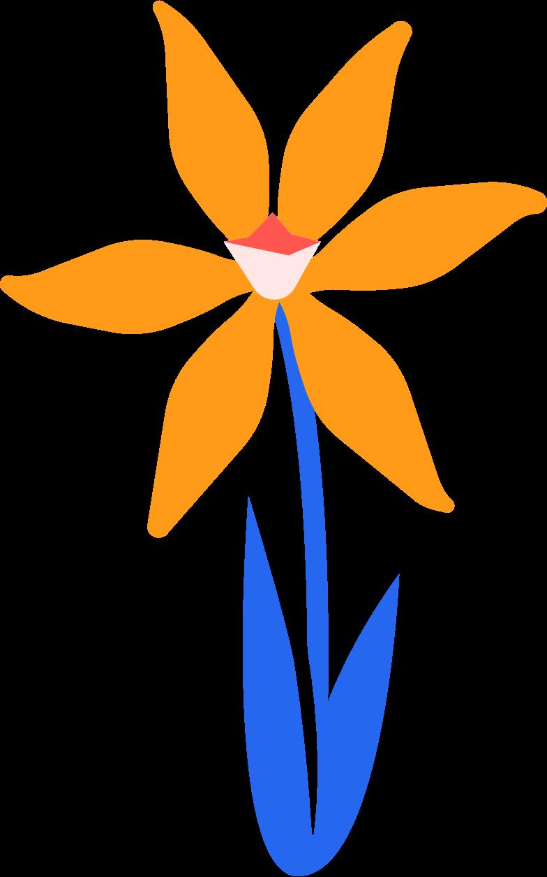 narcissus Clipart illustration in PNG, SVG
