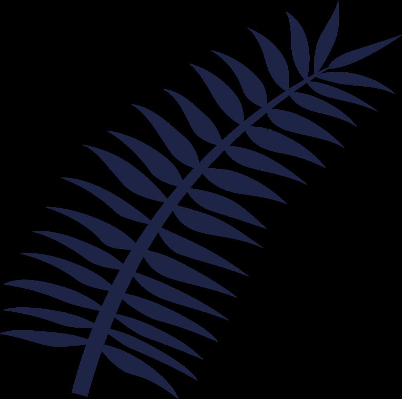 palm leaf line Clipart illustration in PNG, SVG