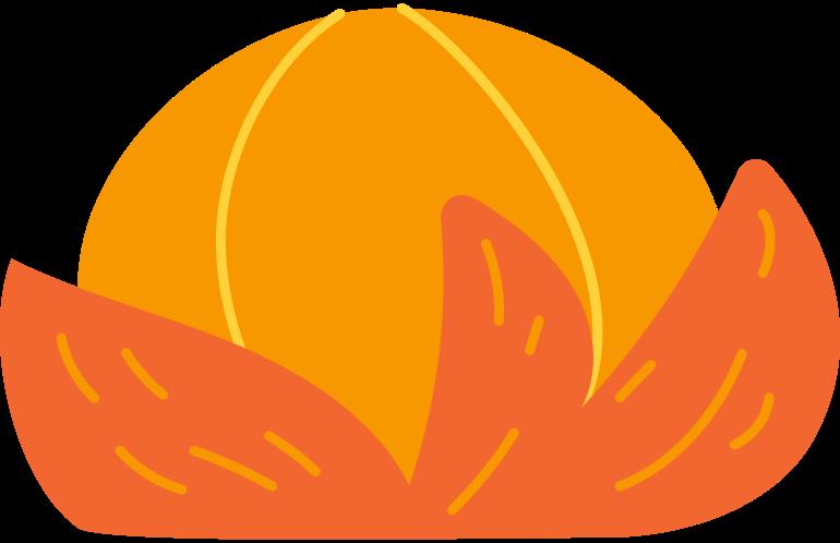 Imágenes vectoriales mandarina en PNG y SVG estilo  | Ilustraciones Icons8