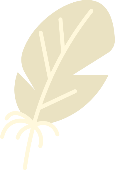 style feather images in PNG and SVG | Icons8 Illustrations