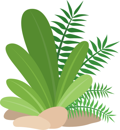 style tropical plants images in PNG and SVG | Icons8 Illustrations