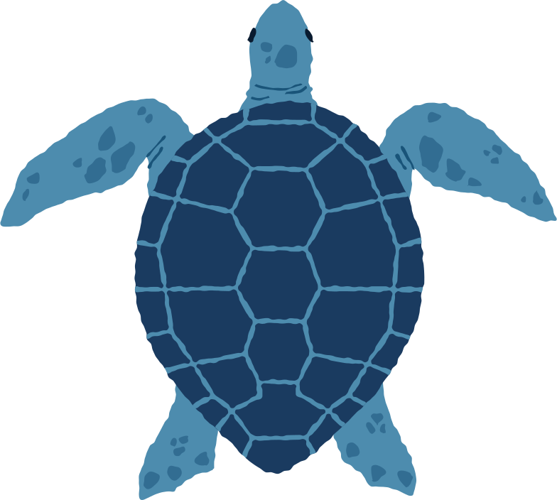 style sea turtle top Vector images in PNG and SVG | Icons8 Illustrations