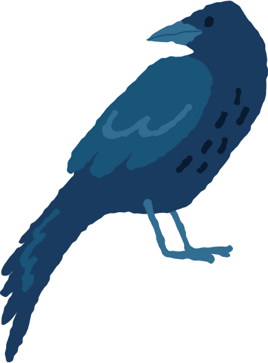style crow images in PNG and SVG | Icons8 Illustrations