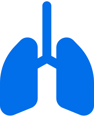 style lungs icon images in PNG and SVG | Icons8 Illustrations