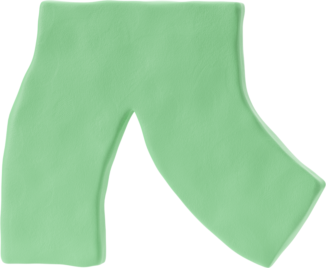 style chel pants Vector images in PNG and SVG | Icons8 Illustrations