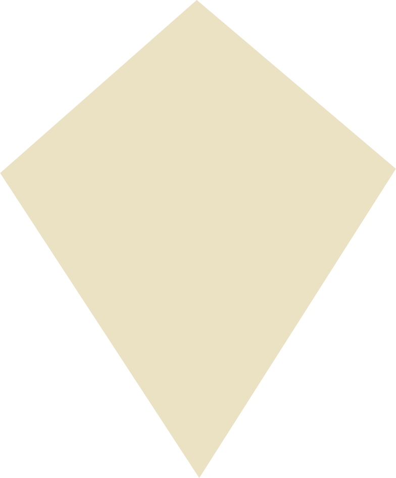 style kite beige Vector images in PNG and SVG | Icons8 Illustrations