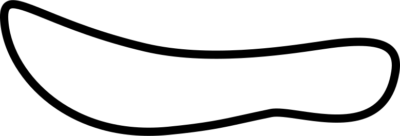 ostrich saddle Clipart illustration in PNG, SVG