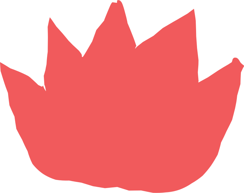 fire Clipart illustration in PNG, SVG