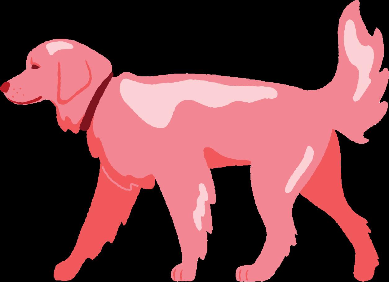 walking dog Clipart illustration in PNG, SVG
