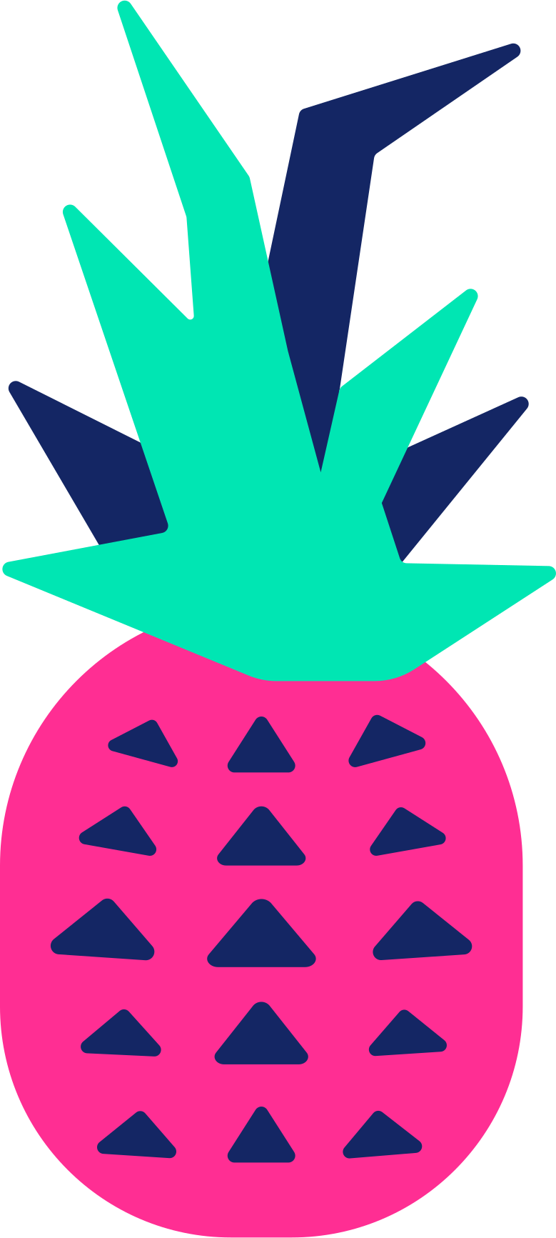 ananas Clipart illustration in PNG, SVG