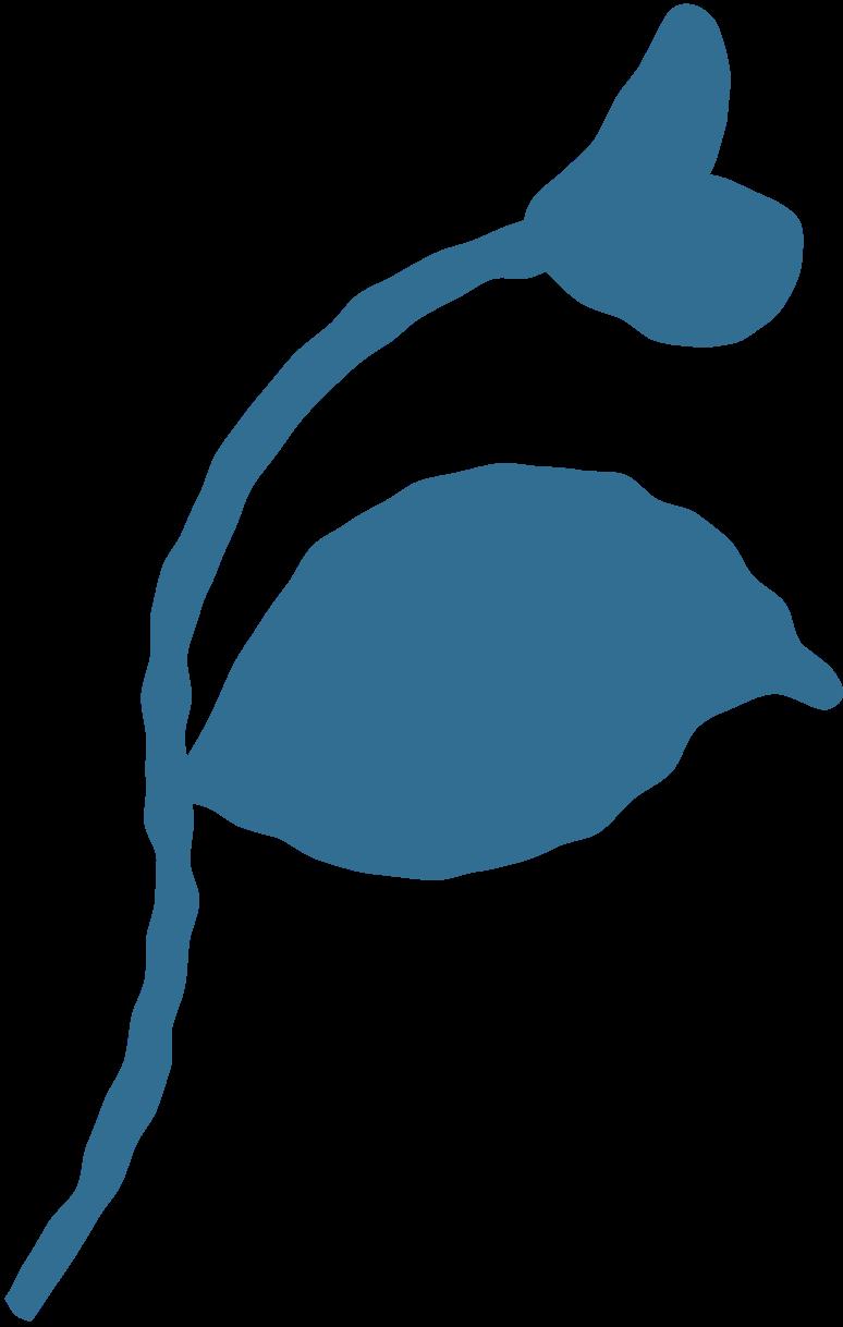 Kleiner zweig mit blättern Clipart-Grafik als PNG, SVG