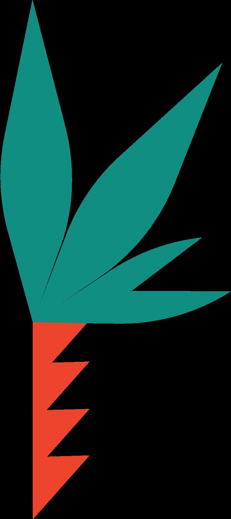 Imágenes vectoriales palma en PNG y SVG estilo  | Ilustraciones Icons8